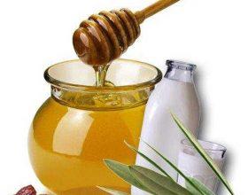 Mjalti triumfon mbi bakteriet