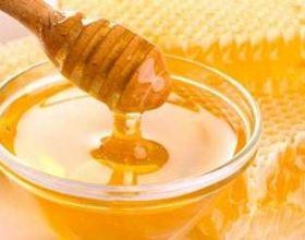 Rezultate mahnitëse të shërimit me mjaltë