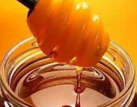 Jepi të pijë mjaltë