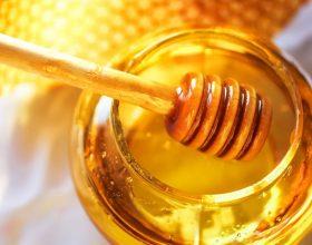 Mjalti si ilaç perdoret te keto semundje
