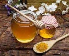 Mjalti ne menaxhimin e plageve