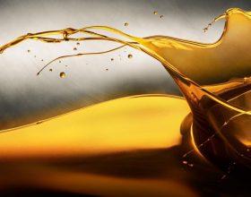 8 dobi kryesore të mjaltit