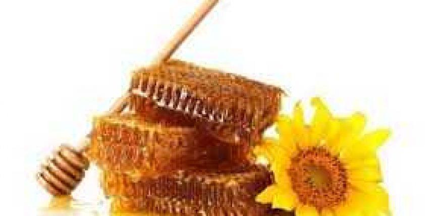 Mjalti si ilaç për 7 sëmundje