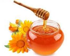 Mjalti dhe dobitë e tij
