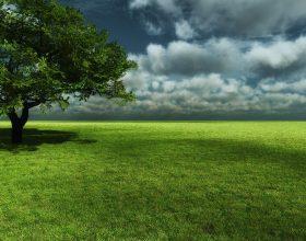 Shetitja dhe pikniku në natyrë çliruese për shpirtin