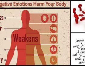 Si e demtojne emocionet organizmin tone?