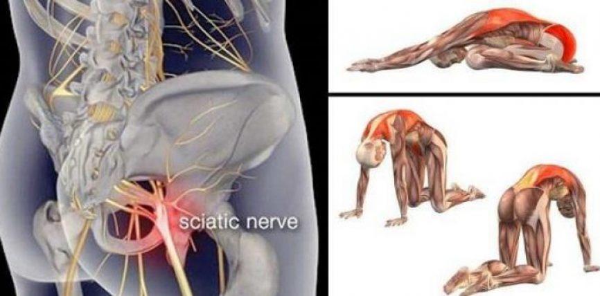 Jepini fund shqetësimeve: Ushtrime të dobishme për dhimbjet e nervit shiatik dhe fundshpinën