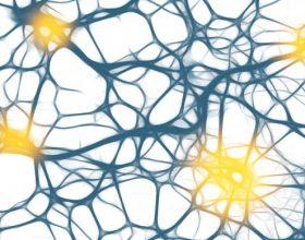Sëmundjet e Epilepsisë dhe pagjumësisë (Foto)