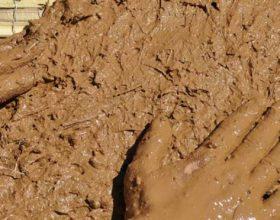 Ademi (alejhis selam) u krijua nga te gjitha ngjyrat e tokes