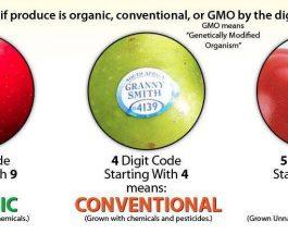 Kur eshte nje produkt organik, konvencional dhe i modifikuar gjenetikisht (GMO)?