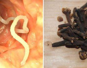 10 Shenjat që keni parazitë dhe ushqimet që ndihmojnë në eleminimin e tyre