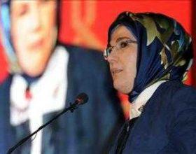 Parlamenti turk lejon shamine ne institucione publike