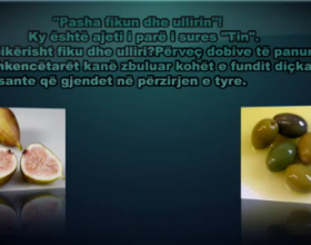 Pasha fikun dhe ullirin! (Kuran 95:1)