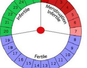 Sa ditë duhet periudha e menstruacioneve të zgjasë ?