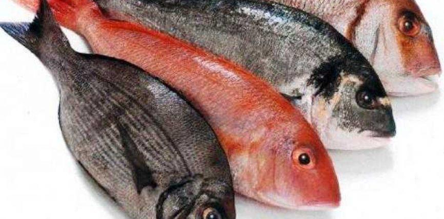 Peshku në të gjitha llojet e tij është një ushqim i mirë për njeriun