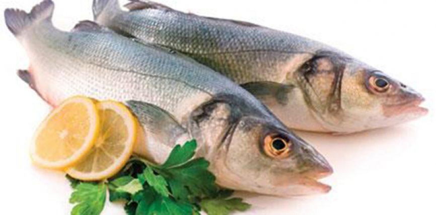 Konsumimi i rregullt i peshkut parandalon sklerozën