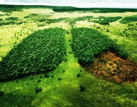 Planeti ynë