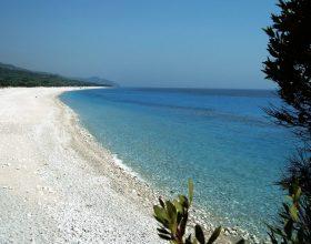 Shkuarja në plazh e ndryshonë trurin në mënyrë të pabesueshme