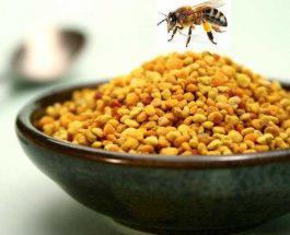 Si njihet poleni i mirë për terapi?