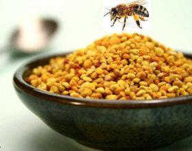 Ç'është poleni?