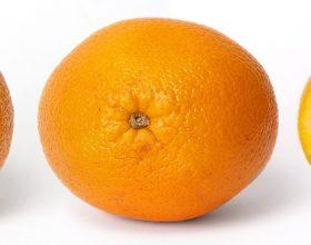 Forconi kockat dhe imunitetin me portokall