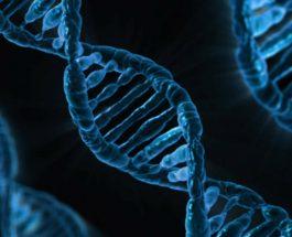 Shkencëtarët kanë zbuluar një mënyrë për t'i bërë qelizat kanceroze të vetë-shkatërrohen