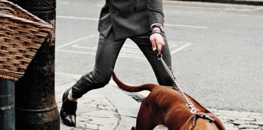 Civilizim përmes qenve
