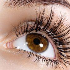Ilaçi më i mire për sytë është antimoni. E foron të pamurit dhe i ngutë qerpikët