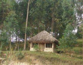 Tregimi mbi nënën e 2 jetimëve që jetonin në një kasolle prej qerpiçi