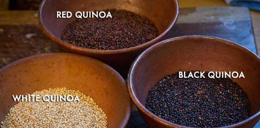 """QUINOA konsiderohet """"Super-Ushqimi"""" i te ardhmes"""