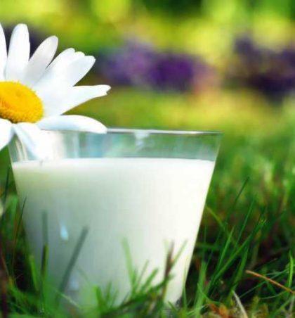 Formimi i qumështit