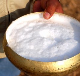 Përmbajtja e qumështit të devesë