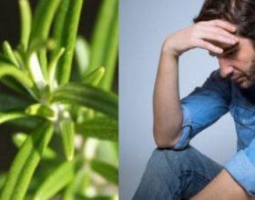 Bima e cila e mbron trurin nga depresioni, shqetësimi dhe sëmundja e Alzheimerit