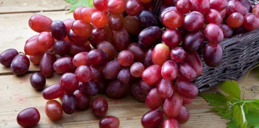Një kokërr rrushi si bamirësi