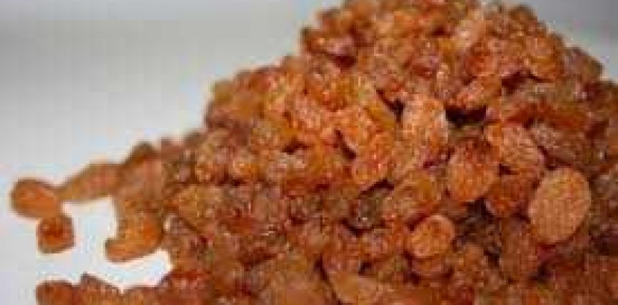 Stafidhja – Rrushi i thatë (zebib)