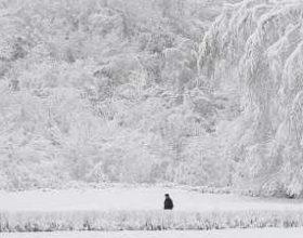 Rusi: reshje anomale dëbore dhe ortekë