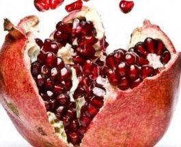 Shega – Njëra ndër frutet e lashta që na nevojitet sot!