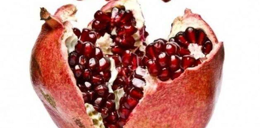 Shega – një ndër frutat më shëruese në botë