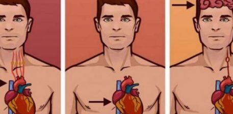 Ja çfarë të bëjmë kur përballemi me një arrest të zemrës apo të frymëmarrjes, Ndihma e parë që duhet të jepni
