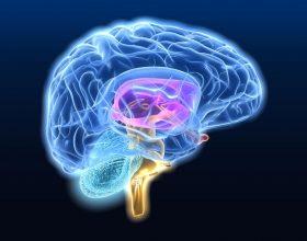 Sherimi i dhembjes se kokes dhe i migrenes