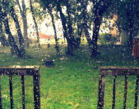 Lësho ujë në kopshtin e filanit