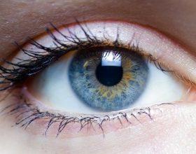 Një përbërës i vetëm dhe shpëtoni përfundimisht nga problemet me shikimin (përmirësim dhe rikthim i shikimit)