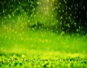 Shiu dhe erërat