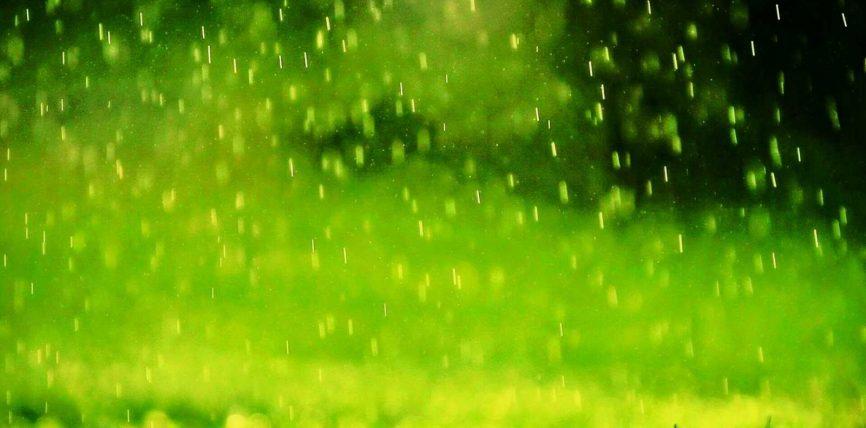 Uji (shiu) dhe rëndësia e tij