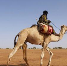 Fshatari në shkretëtirë