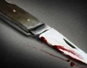 Shkup, burri vret me thikë gruan