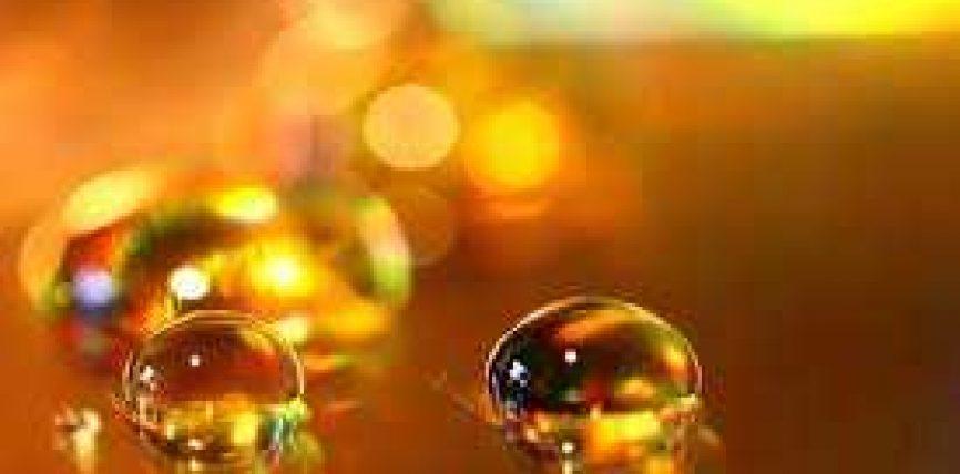 Mjalti i sidrit