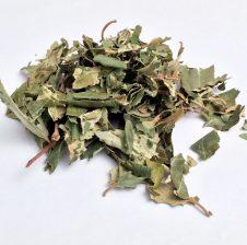 7 gjethe nga Sidri