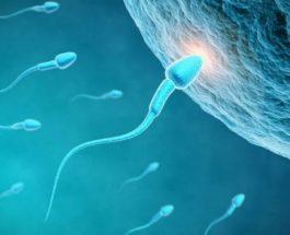 7 shkaqet e sterilitetit