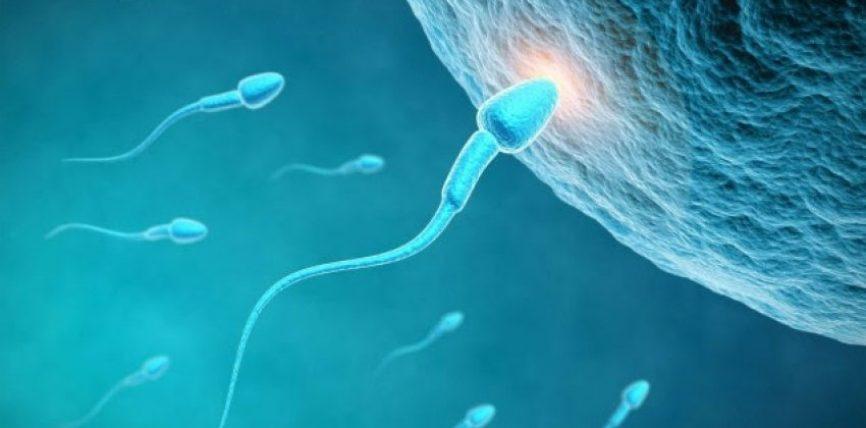Ejakulim (dalja e spermës) i parakohshëm